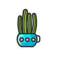 cactus in pot house plant indoor flower isolated vector image vector image