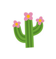 cartoon cactus vector image vector image