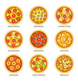 delicious pizzas with various fillings and flavors vector image vector image