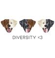diversity labrador retriever with smile vector image vector image
