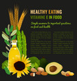 healthy food vitamin e banner vector image