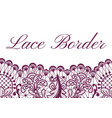 lace border card vector image vector image