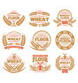 wheat grain product and bread labels vector image vector image