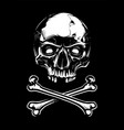 white skull with bones on black background vector image
