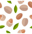 almond nuts seamless pattern in flat design vector image
