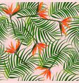 bright tropical background palm leaves and bird vector image vector image