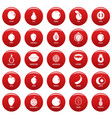 fruits icons set vetor red vector image vector image