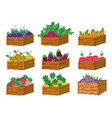 set of pixelated harvest icons vector image vector image