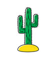 cactus isolated on white background vector image