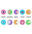 five senses methods of perception taste vision vector image
