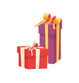 packed presents with decorative ribbon and bow vector image