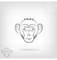 stylized head a monkey vector image vector image