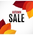 Autumn Leaves Sale Background vector image vector image