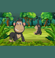 forest background with two gorilla playing vector image vector image