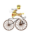 frenchman cyclist american velocipede bicycle vector image