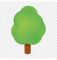 Isometric tree icon vector image