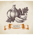 Kitchen herbs and spices vector image