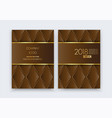 luxury premium design background brochure vector image