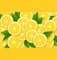 orange and leaf citrus vector image vector image