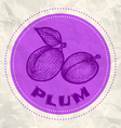 plum vintage paper vector image vector image