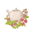 rose tea on white background vector image