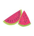 slices watemelon fruit fresh nutrition food vector image