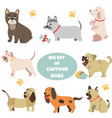 big set of cartoon dogs of different breeds vector image vector image