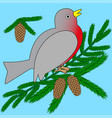 bullfinch sits on a fir branch vector image vector image