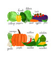 cartoon vegetables collection fresh food vector image