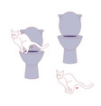 cat poop at human toilet vector image