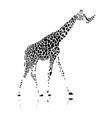 giraffe sketch for your design vector image