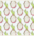 pitaya repetiotion pattern tropical dragon fruit vector image vector image