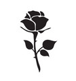 simple flat black rose hand drawn romance flower vector image vector image
