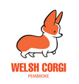 cute cartoon drawing of welsh corgi vector image