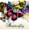 fashion background with beautiful butterlies vector image vector image
