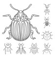 insect and fly icon vector image vector image