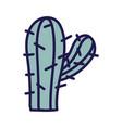 cactus plant botanical icon white background vector image vector image