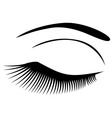 eye long lashes vector image