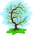 green money tree with euro vector image vector image