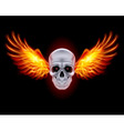 mysterious dark Chrome metal skull wings 01 vector image vector image
