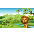 The mountain view with a lion and a river vector image vector image