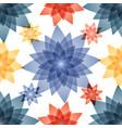 transparent cute flowers vector image