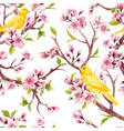 watercolor spring floral pattern vector image vector image