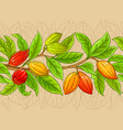 cocoa branches pattern on color background vector image vector image
