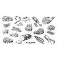 hand drawn meat products parts pork and beef vector image