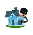 male thief in mask robbed house property vector image