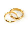 pair wedding rings vector image
