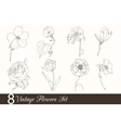 Set of 8 Vintage Drawing Flowers With Tulip vector image