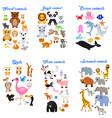 big collection cute cartoon animals vector image vector image
