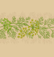 dill plant pattern on color background vector image vector image